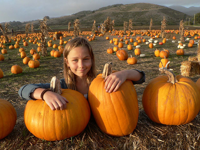 Photo courtesy of HMB Pumpkin Festival