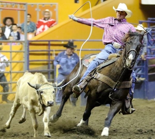Photo courtesy of the Grand National Rodeo