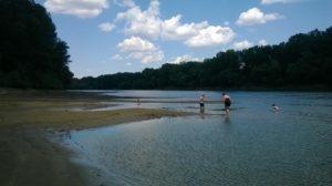 Река Тиса