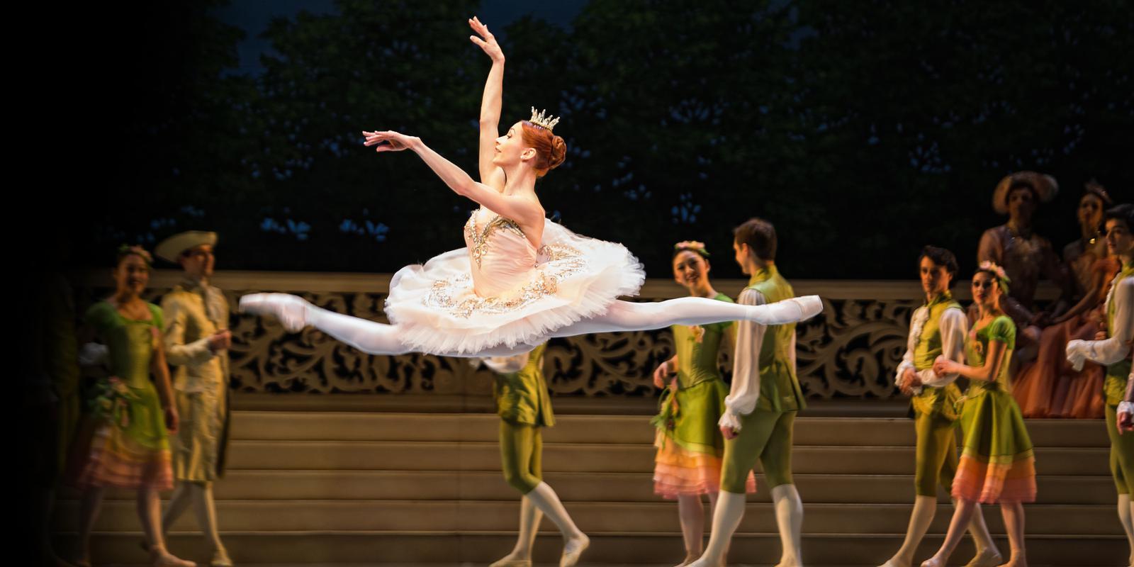 5. Sleeping Beauty Princess Aurora