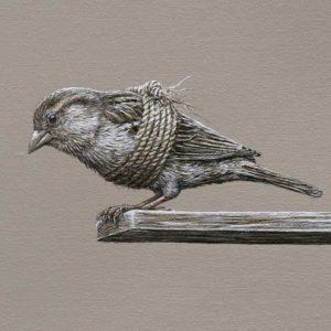 fb4969c449ae98282f3ab07e2d7f92c8--bird-paintings-animal-paintings