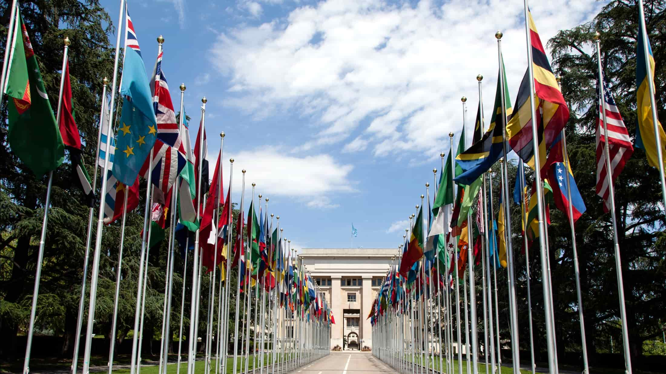 United_Nations_Flags_-_cropped-min