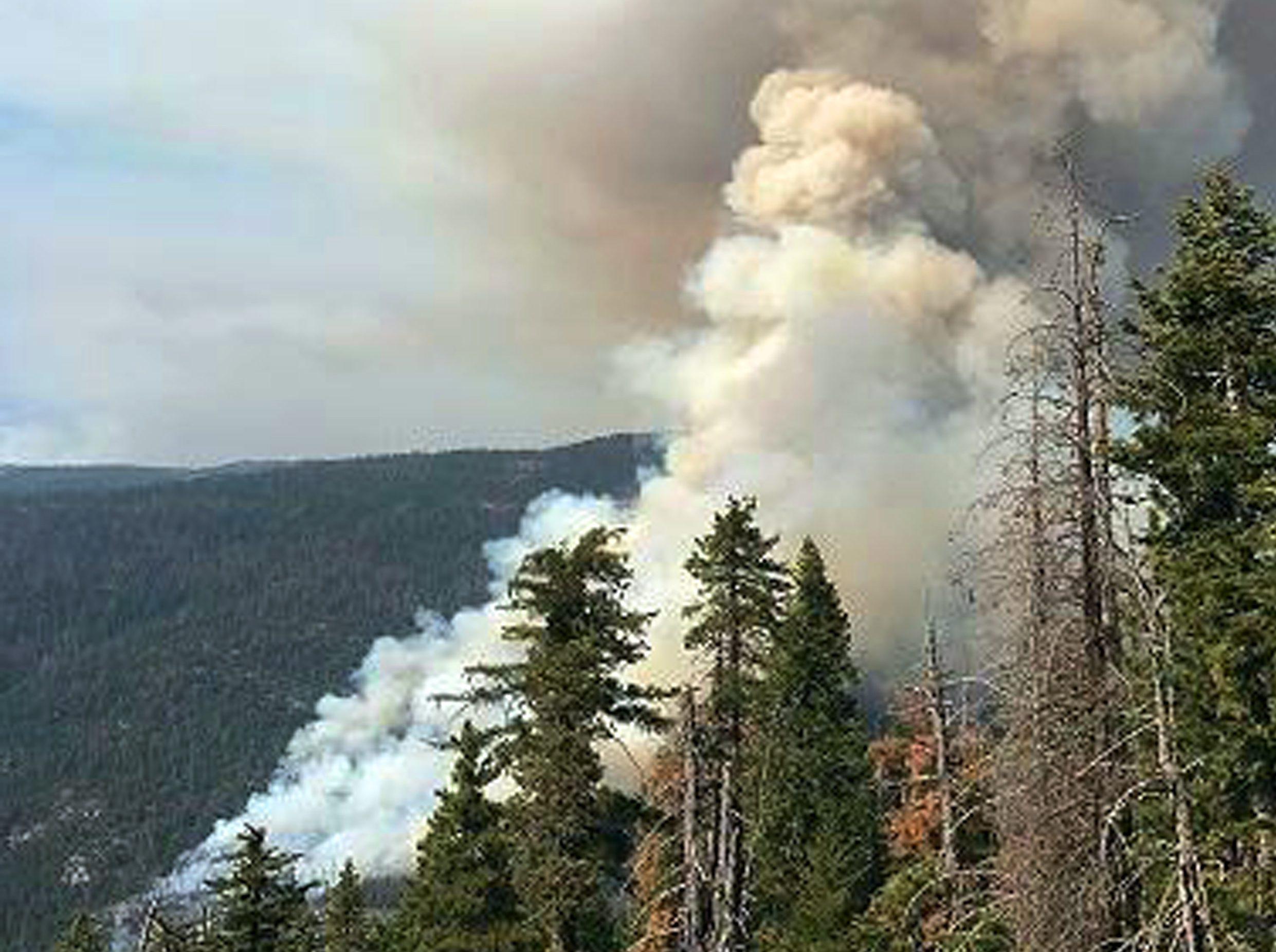 california-wildfires-e1503181964112